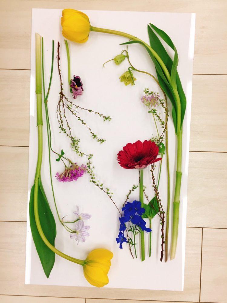 研究科2級1年3月<花で絵を描くⅢ>